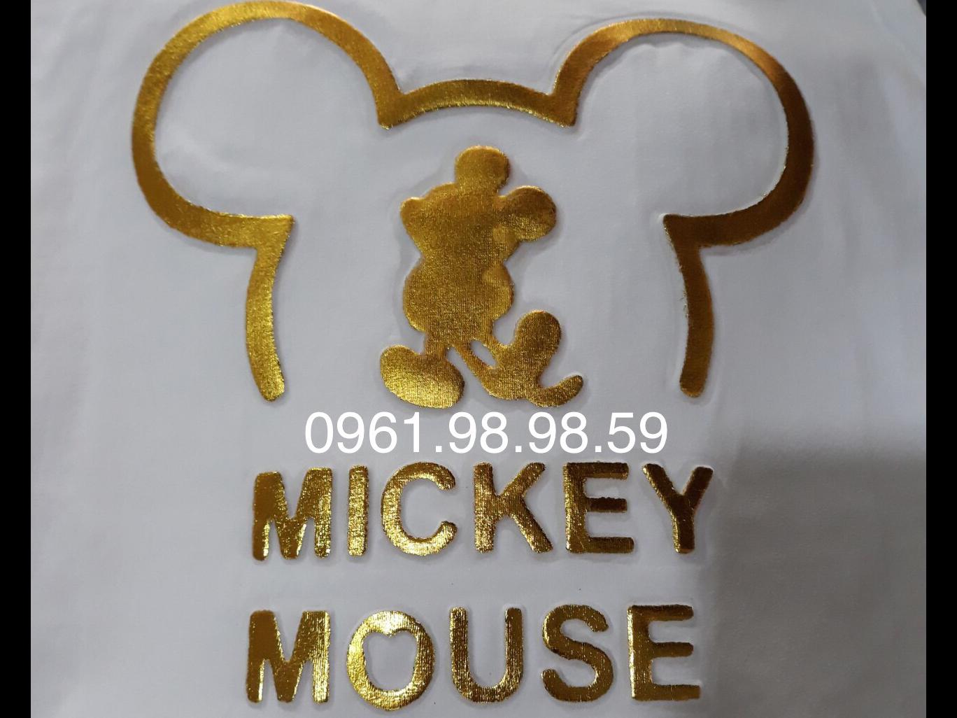 dap noi mickey